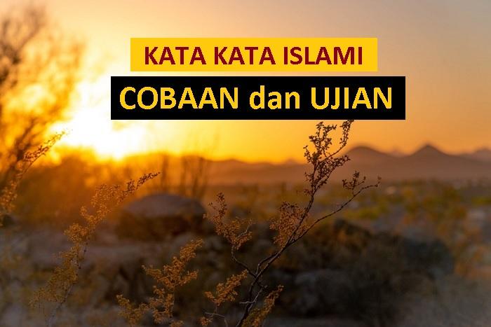 inspirasi islami untuk pengantin baru - kata kata islami tentang cobaan dan ujian